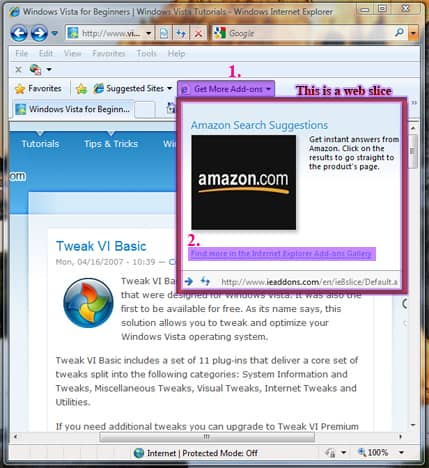 Установка дополнений в Internet Explorer 8.
