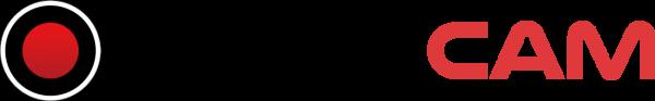 Логотип бандикам